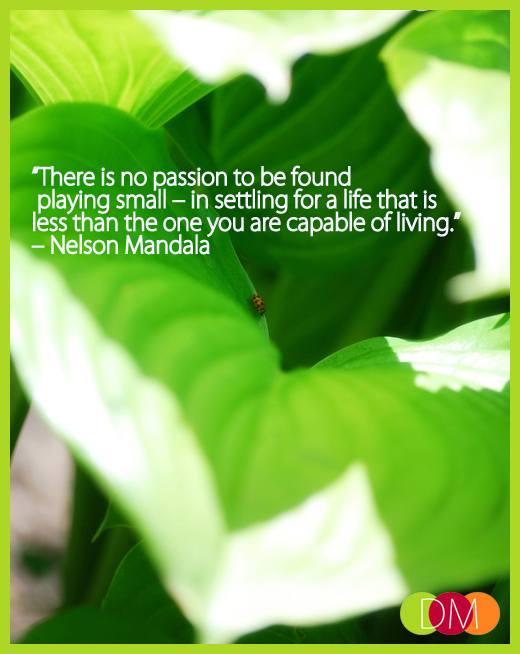 No Passion In Playing Small_Nelson Mandala_Dosh Management_Sarasota-Bradenton-Tampa-Lakewood Ranch_Florida_Business Leadership Development Executive Coaching